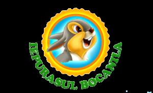 Logo Iepurasul Bocanila